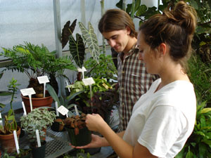 students labeling potted plants