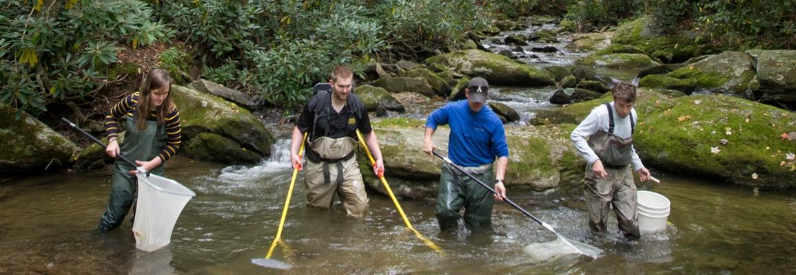 fish researchers in a stream